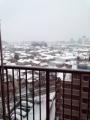 8日の雪の様子