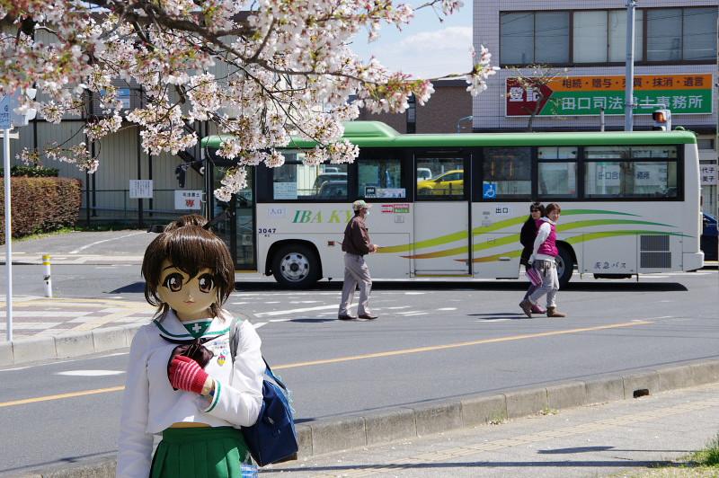 20140405sakuraichi2.jpg
