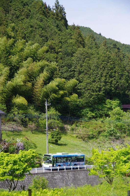 yamanosusume-kurozasu6.jpg