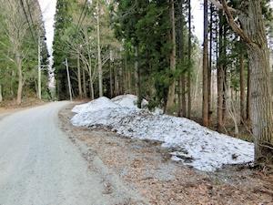 雪の残る落倉自然園の周り