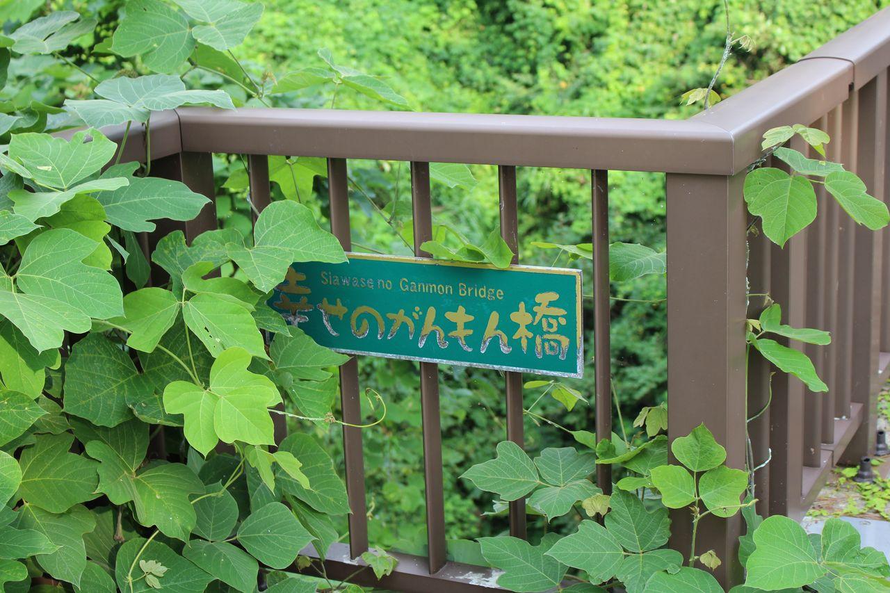 能登金剛・巌門-26