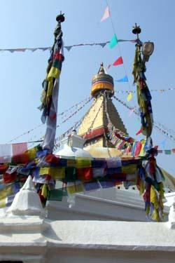 2008_03022008インド・ネパール0196