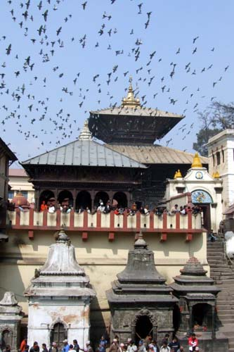 2008_03022008インド・ネパール0211