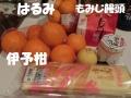 CIMG7292.jpg