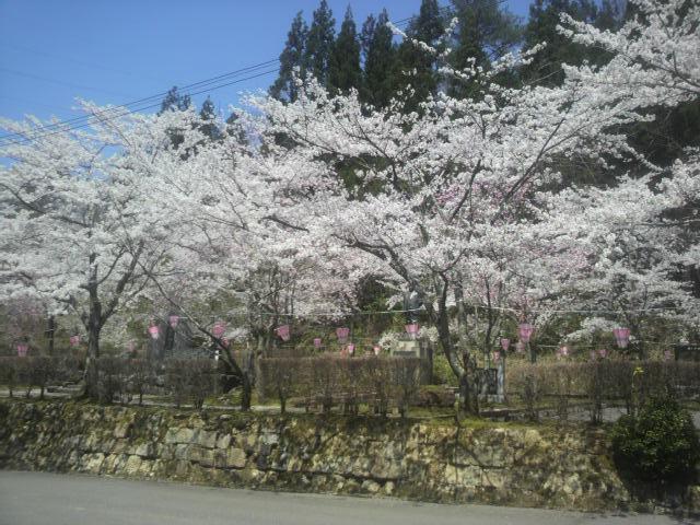 遊泉寺 (2)