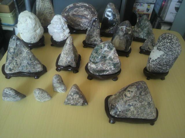 観賞石 (1)