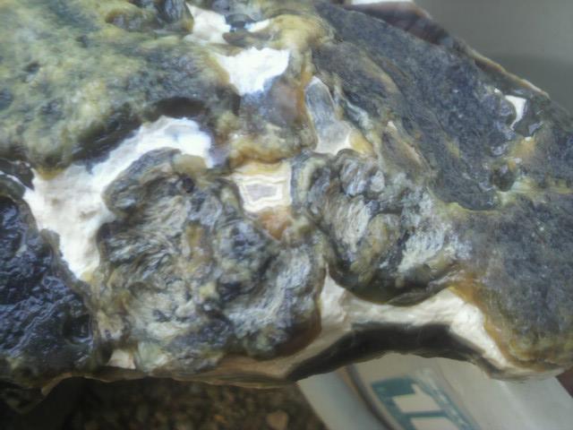 珪化木瑪瑙 (2)