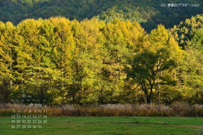 壁紙カレンダー10月