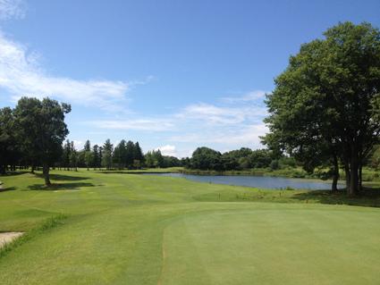 bd_golf4.jpg