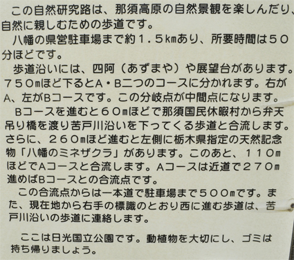tsutsuji12.jpg
