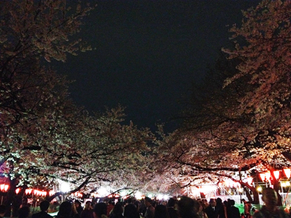 上野お花見