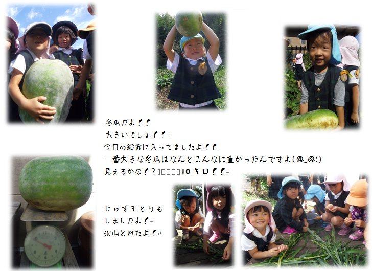 2_20141020113528047.jpg