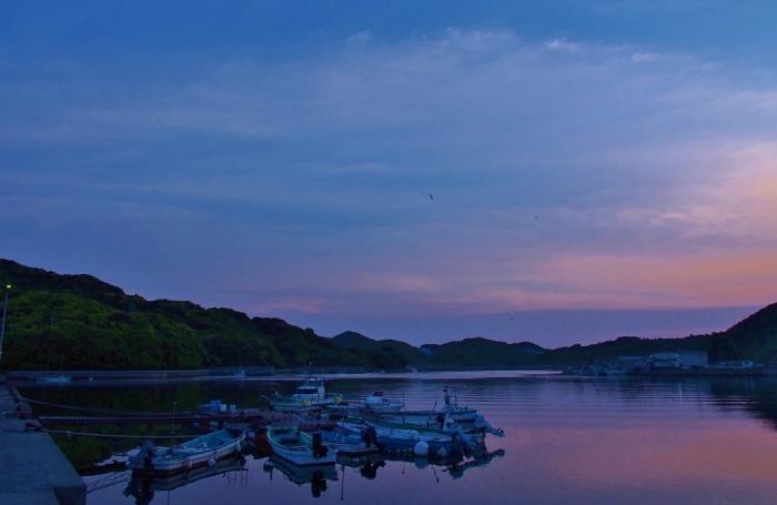 夜明けの浦内湾