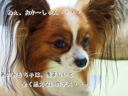3t_SQ8NVb.jpg