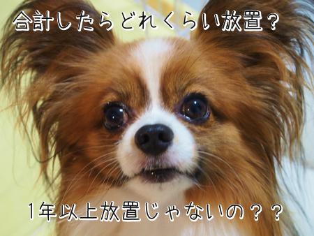 5F1dDu2xA.jpg