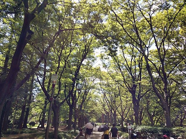 2014.9.13 風のハミング@靭公園センターコート。最高のライブでしたヽ(^o^)丿