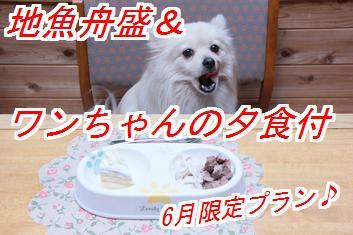 6gatu1_20140430012234e49.jpg