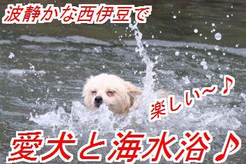 QOYI8t6Z_201404160151464be.jpg