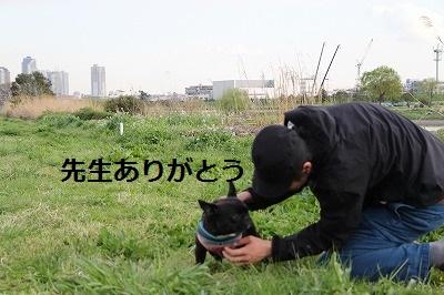 s-26IMG_8620.jpg