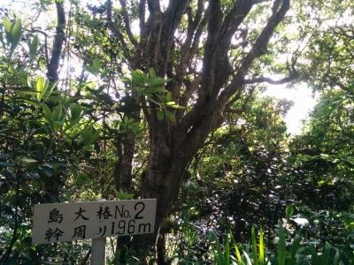 touring_hisaka_08.jpg