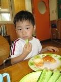 きゅうり試食1