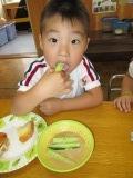 きゅうり試食5
