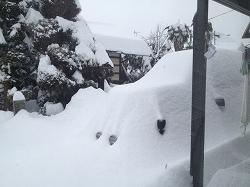 a-雪 3