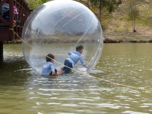 池にボール