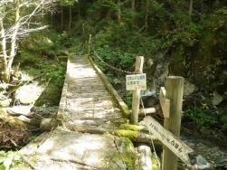 林道終点の登山口