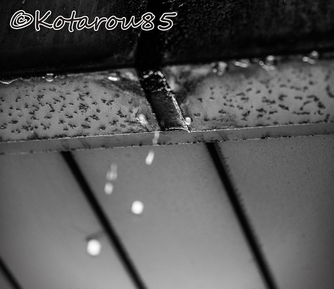 雨 20140815