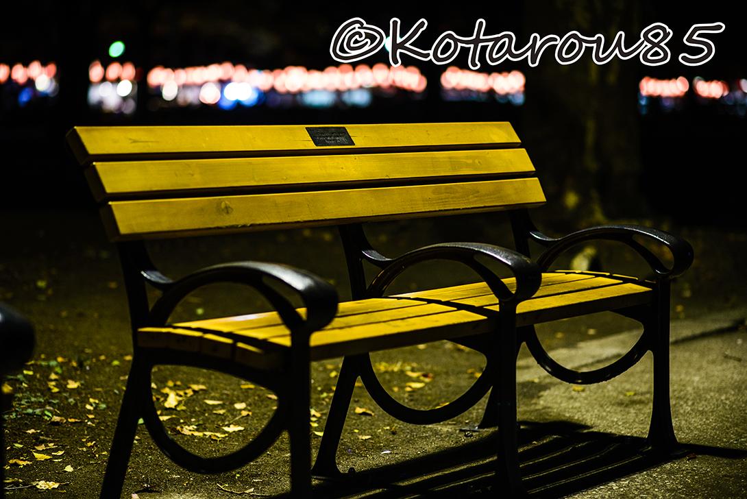 日比谷公園のベンチ 20140824