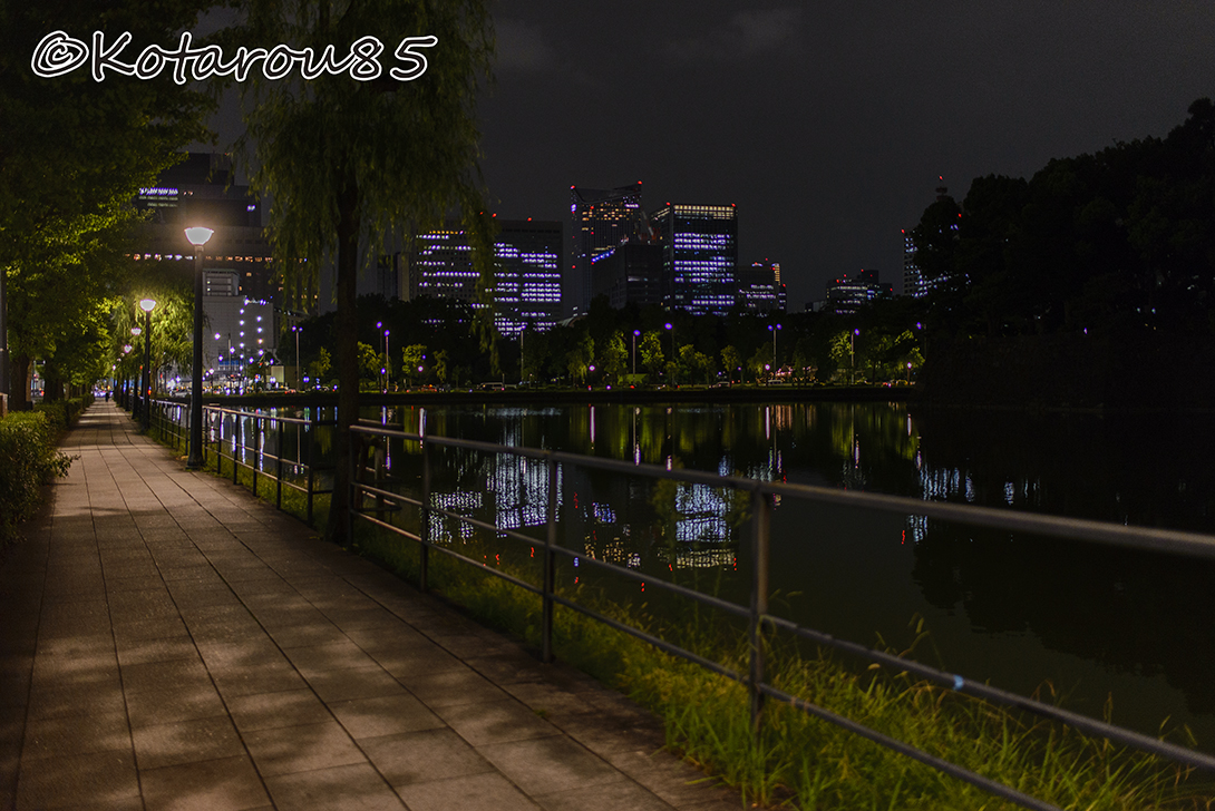 皇居 外堀通り 20140911