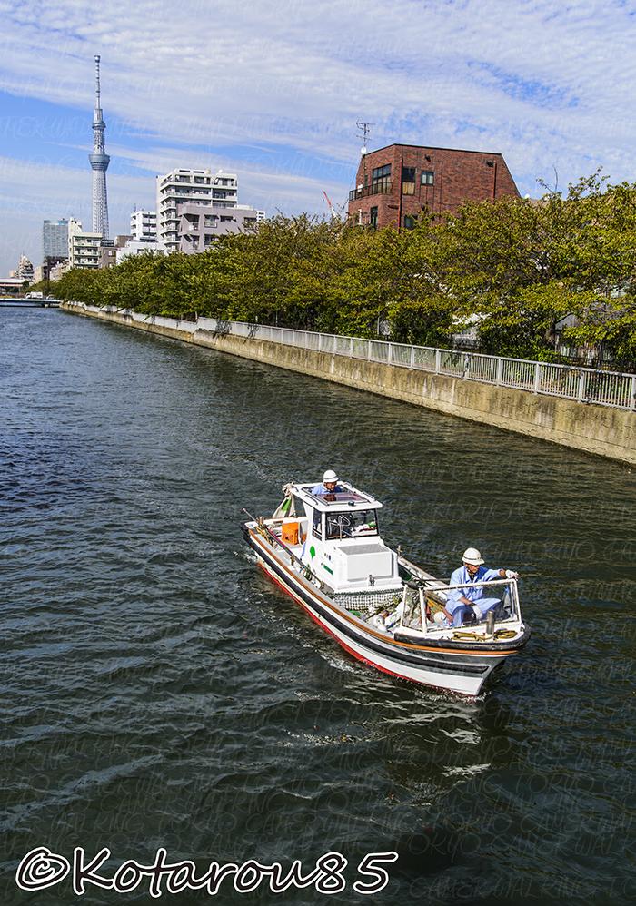 スカイツリーと船 20141004 コピー防止