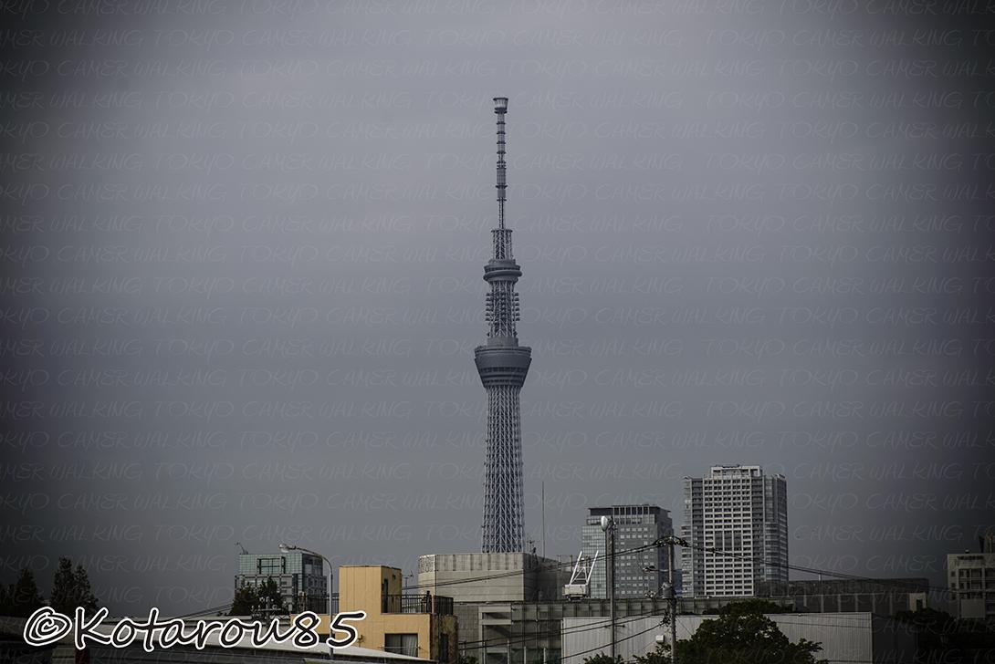台風くるぞ、スカイツリー 20141005
