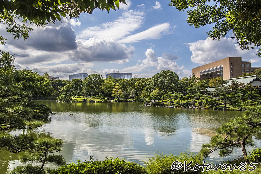 清澄庭園 20141007