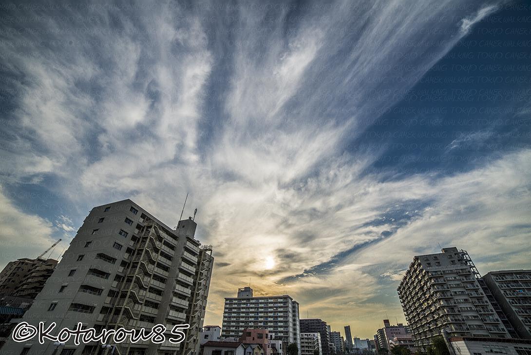 台風、またくるぞ 20141012