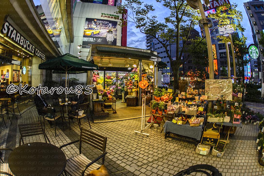 錦糸町のスタバで 20141013