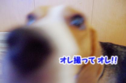 カメラ 3