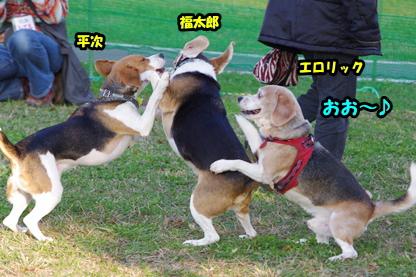 福ちゃん 2