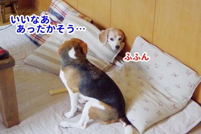 かける 3