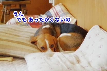かける 1