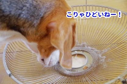 扇風機 3