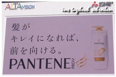 pan7.jpg
