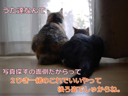 004_convert_20141005164345.jpg