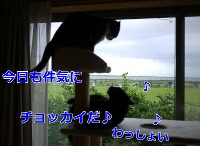 010_convert_20140906145813.jpg