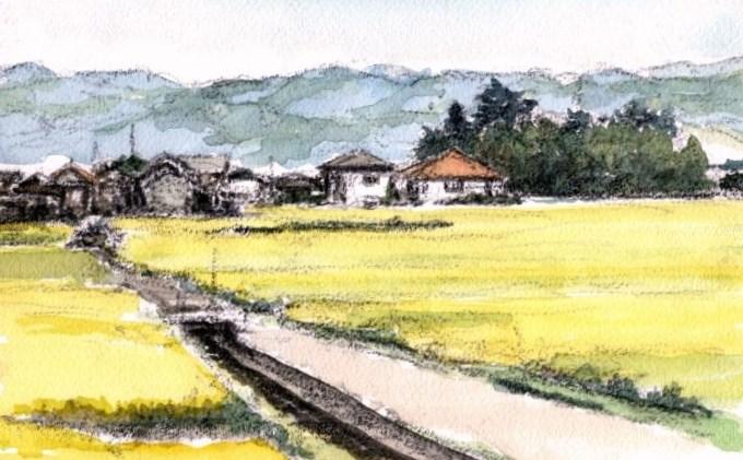 奈良の平野 (700x453)