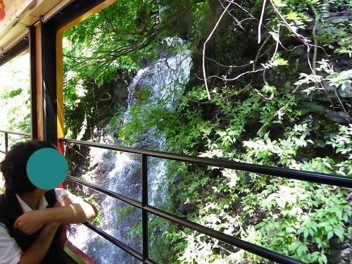 わたらせ渓谷鐵道トロッコの旅2014-074