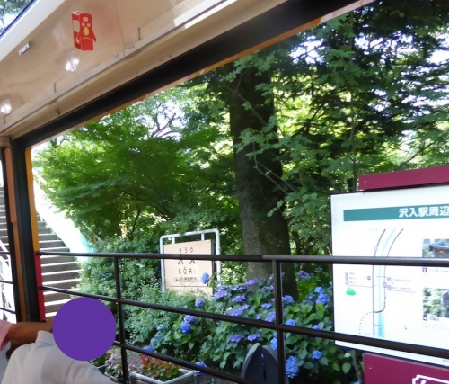 わたらせ渓谷鐵道トロッコの旅2014-095