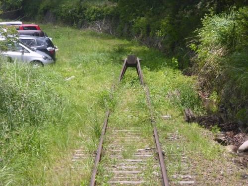 わたらせ渓谷鐵道トロッコの旅2014-155