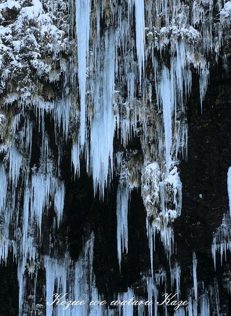 冬の情景25
